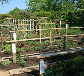 Bienvenue dans notre jardin 'Libres' au festival des jardins de Chaumont.