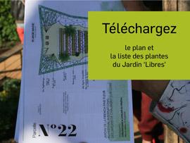 Téléchargez le plan du jardin N°22 'Libres' et la liste des plantes
