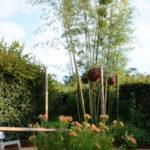 bambous géants Créa Paysage